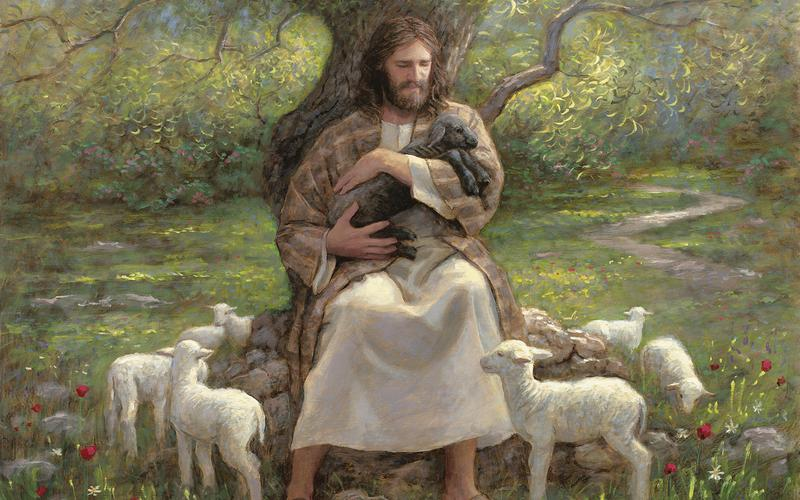 JESUS AND LAMBS